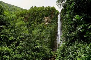Chutes-du-Carbet-guadeloupe