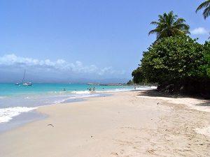 plage guadeloupéenne